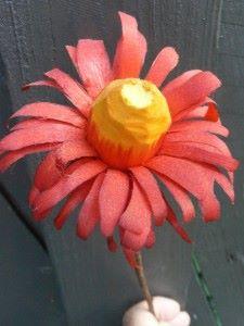 blomst fra Frank